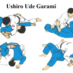 USHIRO-UDE-GARAMI