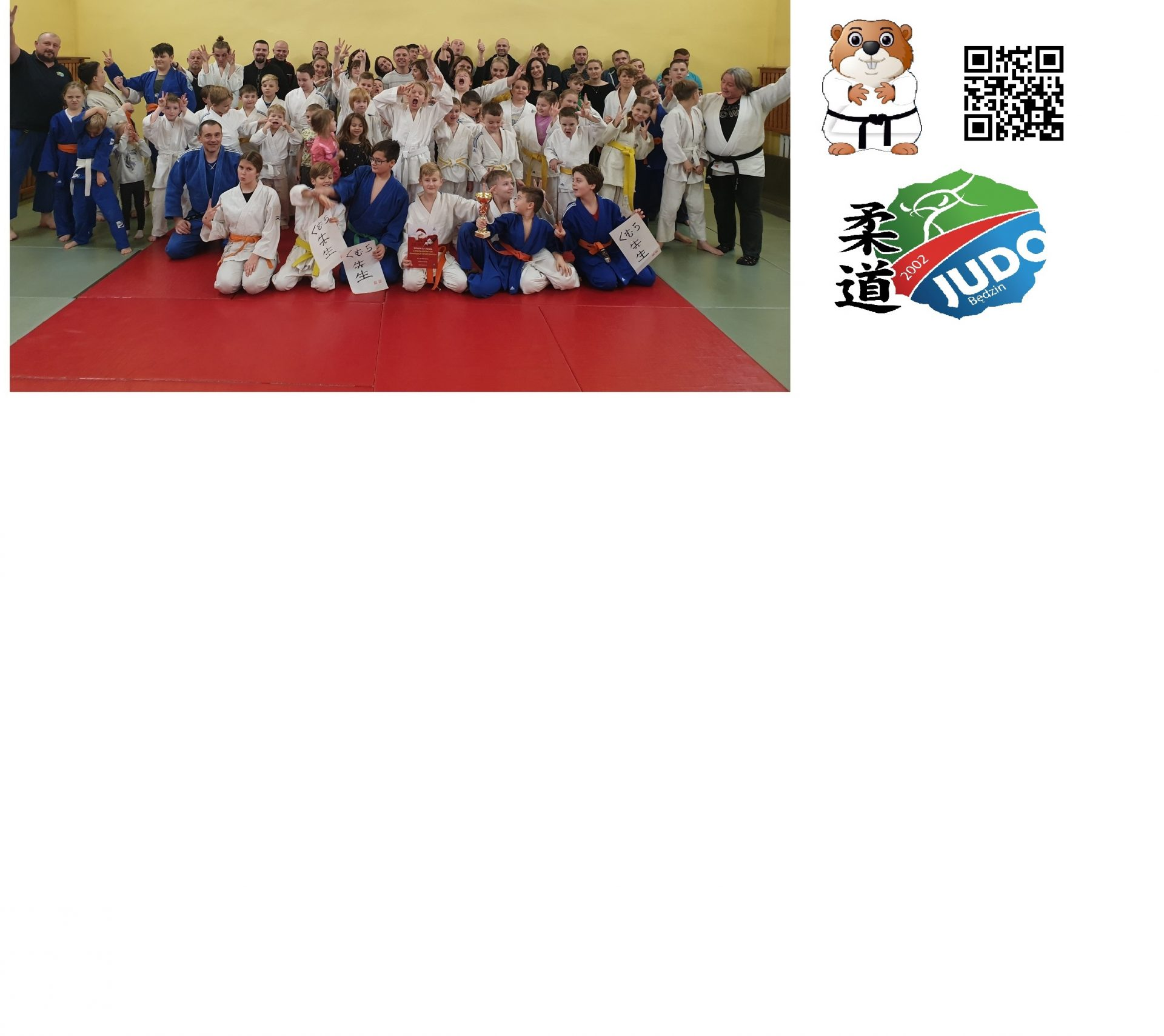 International Judo League